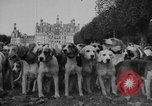 Image of Annual Saint Hubert's hunt Compiegne France, 1938, second 6 stock footage video 65675043744
