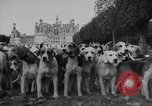 Image of Annual Saint Hubert's hunt Compiegne France, 1938, second 7 stock footage video 65675043744