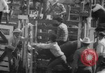 Image of Rodeo Show Texas United States USA, 1961, second 8 stock footage video 65675043757