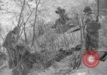 Image of United States Marines Korea, 1950, second 12 stock footage video 65675043808