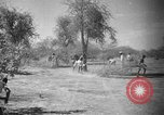 Image of Somalian workers Somalia, 1940, second 5 stock footage video 65675043841