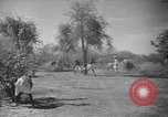 Image of Somalian workers Somalia, 1940, second 8 stock footage video 65675043841