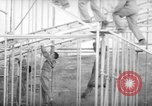 Image of United States paratroopers Fort Benning Georgia USA, 1942, second 10 stock footage video 65675043869