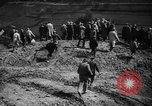 Image of Adolf Hitler tours Westwall Germany, 1939, second 12 stock footage video 65675043941
