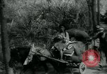 Image of Little Tiger Joe China, 1944, second 7 stock footage video 65675043945