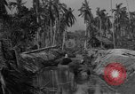 Image of Philippine Operations Philippines, 1944, second 2 stock footage video 65675043985