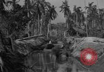 Image of Philippine Operations Philippines, 1944, second 3 stock footage video 65675043985