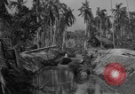 Image of Philippine Operations Philippines, 1944, second 5 stock footage video 65675043985