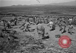 Image of ROK training facility Korea, 1955, second 4 stock footage video 65675044042