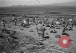 Image of ROK training facility Korea, 1955, second 5 stock footage video 65675044042