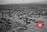 Image of ROK training facility Korea, 1955, second 6 stock footage video 65675044042