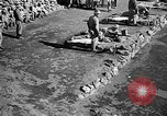 Image of Republic of Korea troops being trained Korea, 1955, second 12 stock footage video 65675044043