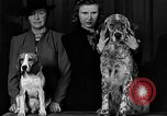 Image of dog show New York United States USA, 1940, second 6 stock footage video 65675044063