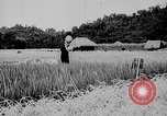 Image of Ho Chi Minh Vietnam, 1941, second 1 stock footage video 65675044085