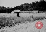 Image of Ho Chi Minh Vietnam, 1941, second 2 stock footage video 65675044085
