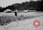 Image of Ho Chi Minh Vietnam, 1941, second 3 stock footage video 65675044085