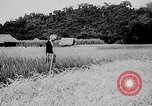 Image of Ho Chi Minh Vietnam, 1941, second 4 stock footage video 65675044085