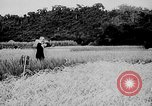 Image of Ho Chi Minh Vietnam, 1941, second 5 stock footage video 65675044085