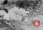 Image of Ho Chi Minh washes his feet Vietnam, 1942, second 10 stock footage video 65675044086