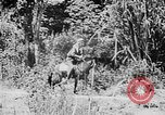 Image of Ho Chi Minh rides pony on jungle trail Vietnam, 1942, second 3 stock footage video 65675044087