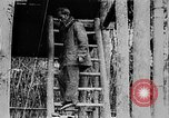 Image of Ho Chi Minh Vietnam, 1954, second 6 stock footage video 65675044099