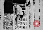 Image of Ho Chi Minh Vietnam, 1954, second 7 stock footage video 65675044099