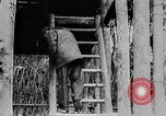 Image of Ho Chi Minh Vietnam, 1954, second 8 stock footage video 65675044099