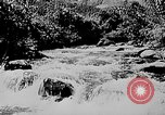 Image of Ho Chi Minh Vietnam, 1954, second 5 stock footage video 65675044100