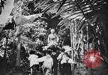 Image of Ho Chi Minh Vietnam, 1954, second 8 stock footage video 65675044100