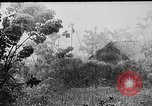 Image of Rainy season in Vietnam Vietnam, 1954, second 1 stock footage video 65675044101