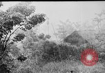 Image of Rainy season in Vietnam Vietnam, 1954, second 2 stock footage video 65675044101