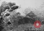 Image of Rainy season in Vietnam Vietnam, 1954, second 3 stock footage video 65675044101