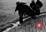 Image of Rainy season in Vietnam Vietnam, 1954, second 12 stock footage video 65675044101