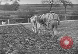 Image of Great Depression relief United States USA, 1933, second 7 stock footage video 65675044177