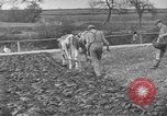 Image of Great Depression relief United States USA, 1933, second 9 stock footage video 65675044177