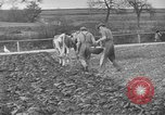 Image of Great Depression relief United States USA, 1933, second 11 stock footage video 65675044177
