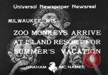 Image of Washington Park Zoo monkeys Milwaukee Wisconsin USA, 1933, second 2 stock footage video 65675044356