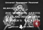 Image of Washington Park Zoo monkeys Milwaukee Wisconsin USA, 1933, second 3 stock footage video 65675044356