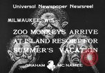 Image of Washington Park Zoo monkeys Milwaukee Wisconsin USA, 1933, second 4 stock footage video 65675044356