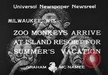 Image of Washington Park Zoo monkeys Milwaukee Wisconsin USA, 1933, second 6 stock footage video 65675044356