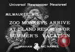 Image of Washington Park Zoo monkeys Milwaukee Wisconsin USA, 1933, second 7 stock footage video 65675044356