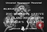 Image of Washington Park Zoo monkeys Milwaukee Wisconsin USA, 1933, second 8 stock footage video 65675044356