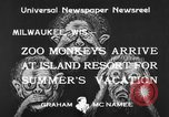 Image of Washington Park Zoo monkeys Milwaukee Wisconsin USA, 1933, second 9 stock footage video 65675044356