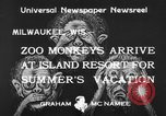 Image of Washington Park Zoo monkeys Milwaukee Wisconsin USA, 1933, second 10 stock footage video 65675044356