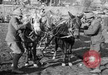Image of American Expeditionary Force France, 1918, second 6 stock footage video 65675044411