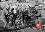 Image of American Expeditionary Force France, 1918, second 7 stock footage video 65675044411