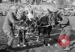 Image of American Expeditionary Force France, 1918, second 8 stock footage video 65675044411