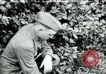 Image of 318th Infantry Regiment France, 1918, second 1 stock footage video 65675044423