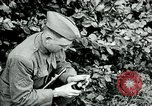 Image of 318th Infantry Regiment France, 1918, second 2 stock footage video 65675044423