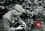 Image of 318th Infantry Regiment France, 1918, second 4 stock footage video 65675044423